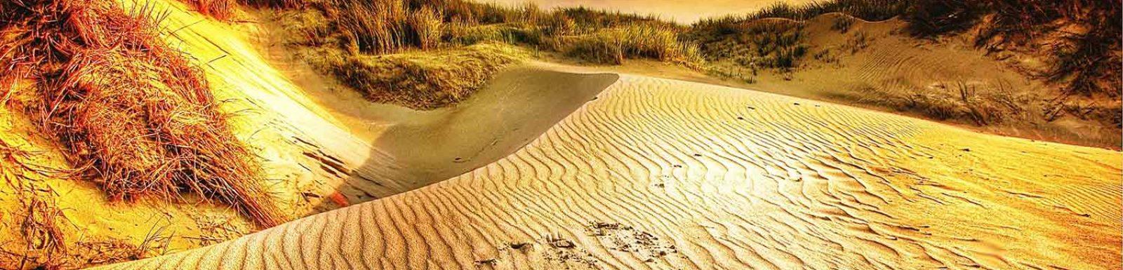dunes-platja-de-pals-001